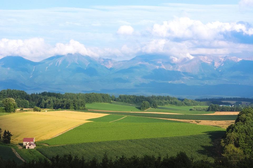 paysage biei