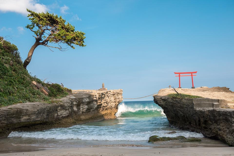 décor tropical matsuzaki