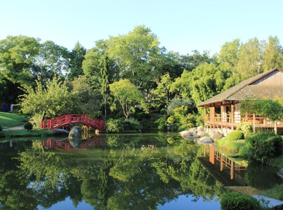 jardin japonais pierre baudis
